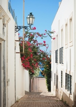 Albufeira Old Town Flowers