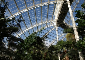 Sefton Park Palm House Interior