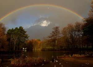 Calderstones Lake & Rainbow