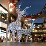 Light Reindeers