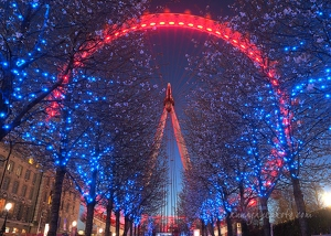 London Eye & Blossom