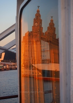 Liver Building Reflected