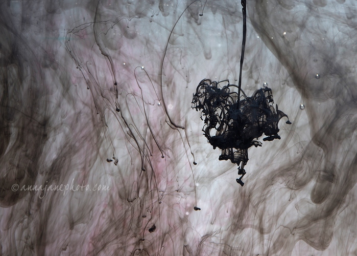 Suspended - 20160212-suspended.jpg - Anna Nielsson