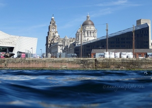 Pier Head from Canning Dock