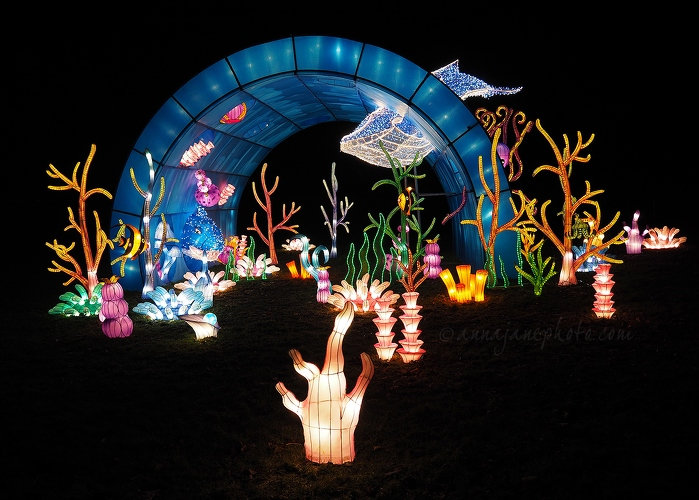 Under the Sea - 20171124-under-the-sea-lanterns.jpg - Anna Nielsson