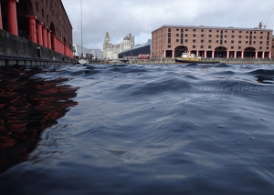 Windy Albert Dock