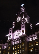 Flight, Liver Building